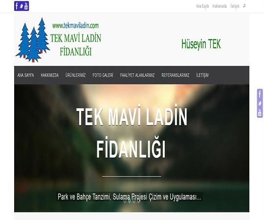 TEK MAVİ LADİN KURUMSAL WEB SİTESİ